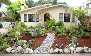 Menlo Park Resident Converts Yard To Drought Tolerant In Two Days